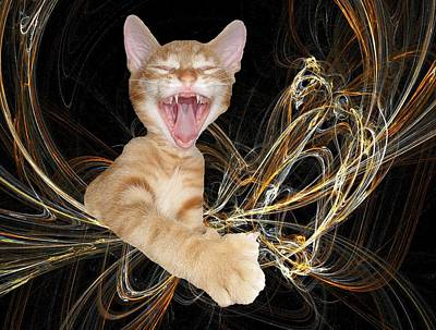 Photograph - Laughing Rascal by Zsuzsa Balla