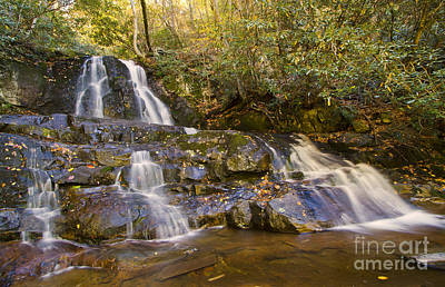 Photograph - Laurel Falls by Dennis Hedberg