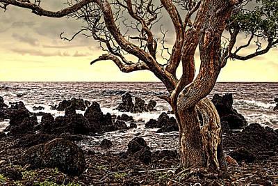 Lava Rocks And The Sea Art Print