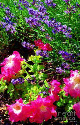 Photograph - Lavender And Petunias II by Christine S Zipps