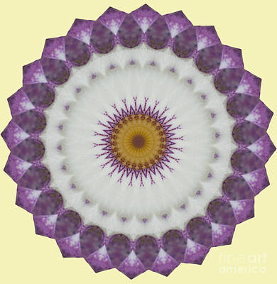Photograph - Lavender And Yellow Kaleidoscope by Jim And Emily Bush