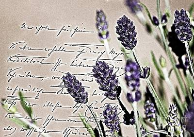 Photograph - Lavender Letter by Erica Hanel