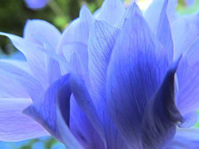 Layers Of Blue Art Print