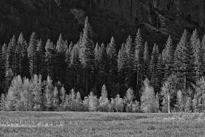 Photograph - Layers Of Yosemite by Rick Berk