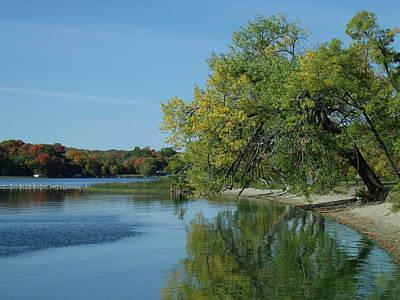 Lazy Fall Tree Over Glassy Lake Art Print
