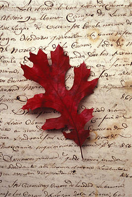 Red Leaf Photograph - Leaf On Letter by Garry Gay
