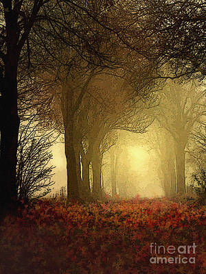 Bare Trees Digital Art - Leaf Path by Robert Foster