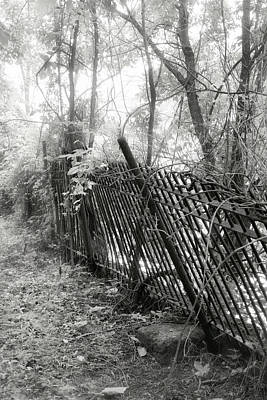 Photograph - Leaning Fence by Mary Almond