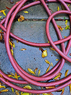 Leaves And Hose Art Print by Bill Owen