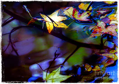 Leaves And Reflections Art Print by Judi Bagwell
