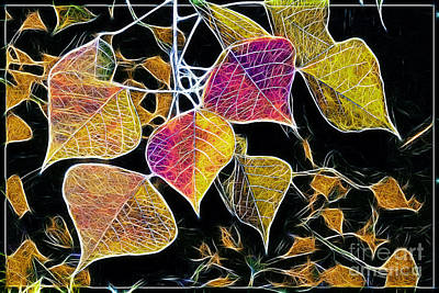 Photograph - Leaves by Judi Bagwell