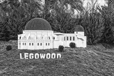 Photograph - Legowood - Bw by Nicholas Evans