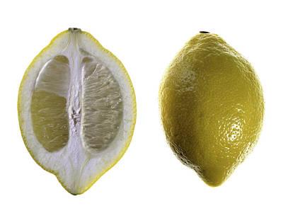 Lemon Art Print by Nathaniel Kolby