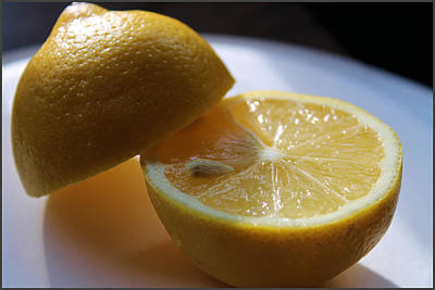 Lemon Slices Art Print by Sarah Broadmeadow-Thomas