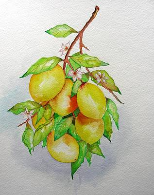 Painting - Lemons by Elena Mahoney