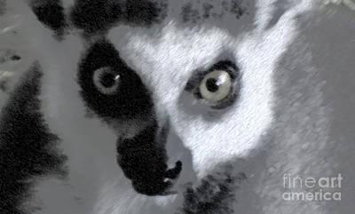 Lemur Art Print by John From CNY