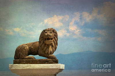 Leo On A Roof Art Print by Susan Isakson