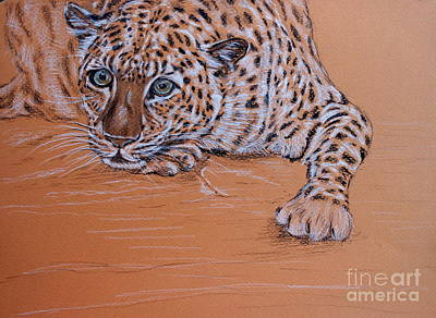 Art Print featuring the pastel Leopard 1 by Amanda Dinan