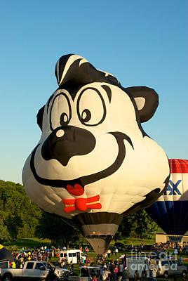 Hot Air Balloons Photograph - Lepew 2 by Mark Dodd