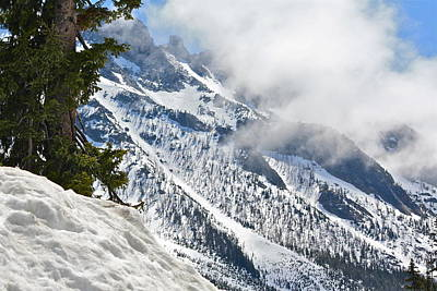 Photograph - Let It Snow by Diana Hatcher