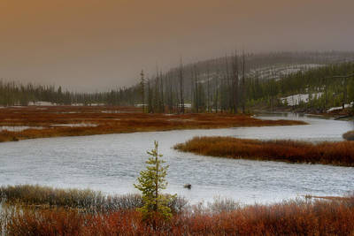 Photograph - Lewis River - Yellowstone National Park by Ellen Heaverlo