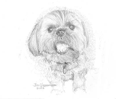 Lhasa Apso Art Print by Jim Hubbard