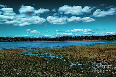Seattle Photograph - Liberty Bay Seattle Wa by RJ Aguilar
