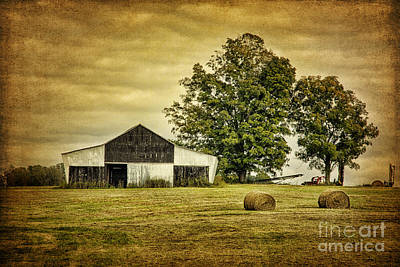 Life On The Farm Art Print