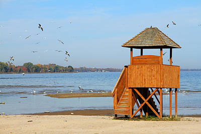 Art Print featuring the photograph Lifeguard Lookout by Mark J Seefeldt