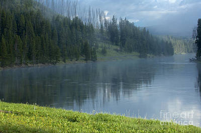 Photograph - Lifting Fog On The Yellowstone by Sandra Bronstein