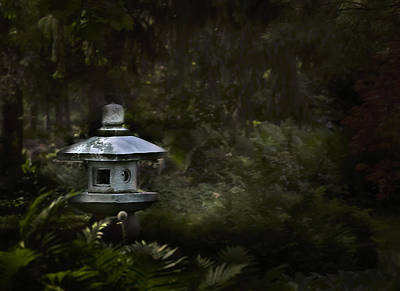 Photograph - Light And Tranquility by Robin Webster