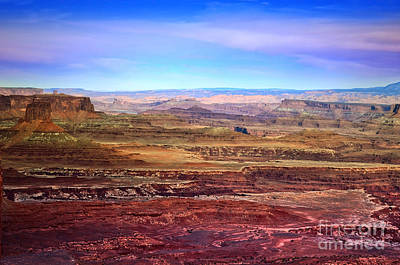 Photograph - Light In Canyonlands by Tara Turner