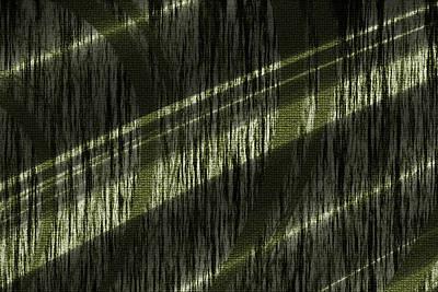 Wood Grain Digital Art - Light Wall by Evelyn Patrick