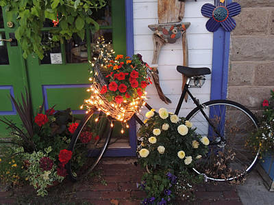 Lighted Bicycle Bayfield Art Print by Peg Toliver