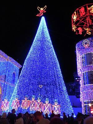 Lighted Xmas Tree Walt Disney World Art Print