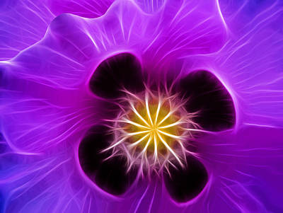 Lilac Poppy Art Print