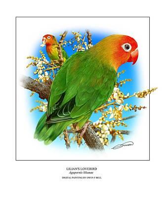 Lovebird Digital Art - Lilians Lovebird 1 by Owen Bell