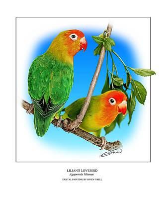 Lovebird Digital Art - Lilians Lovebird 2 by Owen Bell