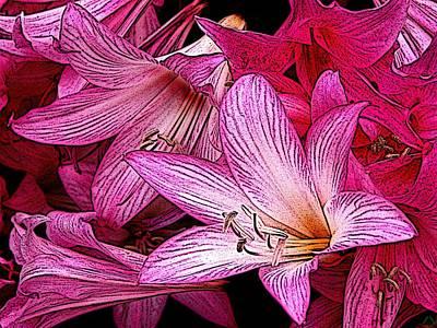 Lilies Illustrated Original