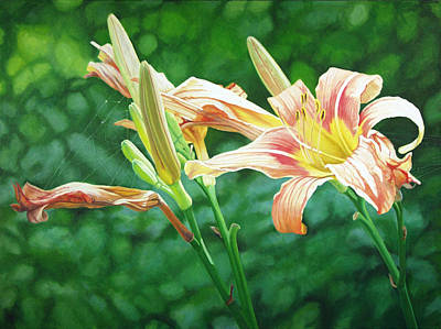 Painting - Lilies On The Web by - Harlan