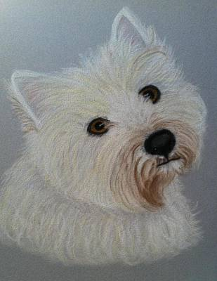 Lilly A Pastel Portrait Art Print by Hillary Rose