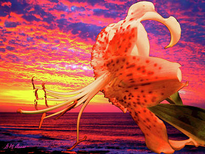 Lily At Sunset Art Print by Michael Durst