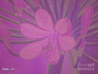Lily Fleur Line Art Print