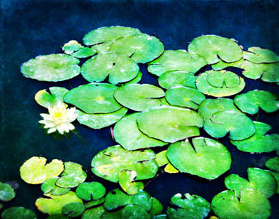 Lily Pads And Lotus Art Print by Tammy Wetzel