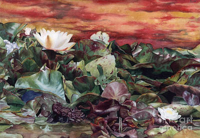 White Waterlily Painting - Lily Pond by Isabella Kung