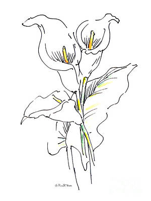 Painting - Lily Watercolor Drawing 1 by Gordon Punt