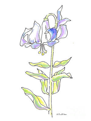 Painting - Lily Watercolor Drawing 5 by Gordon Punt