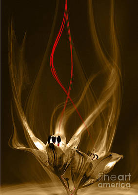 Digital Art - Lily With Red Flow by Johnny Hildingsson