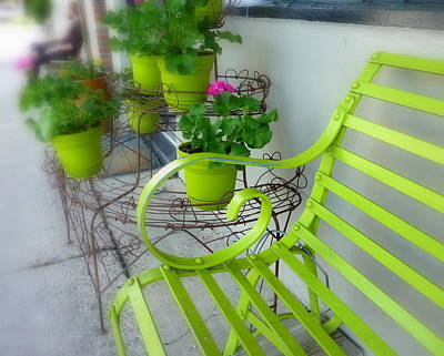 Photograph - Lime Green by Cindy Wright