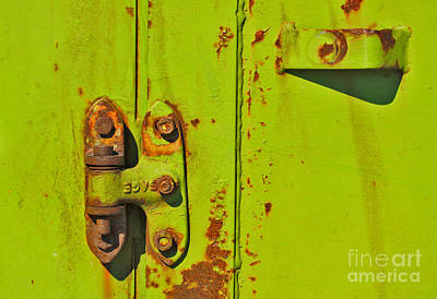 Photograph - Lime Hinge by Stephen Mitchell
